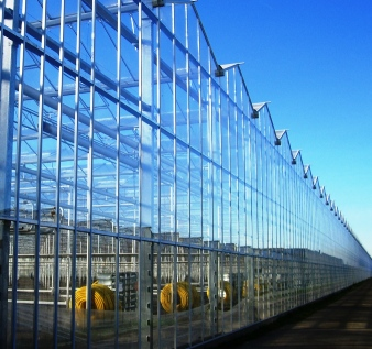 venlo greenhouse gable wall