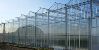 venlo greenhouse side view2